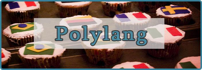 WordPress Multilingua-Polylang