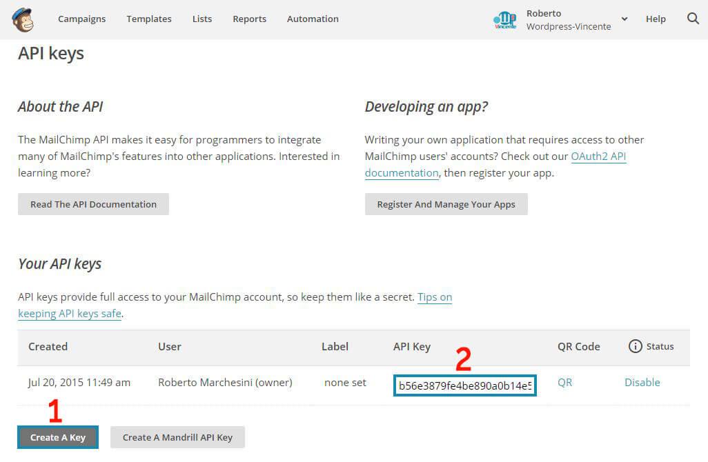 MailChimp su WordPress-Step1