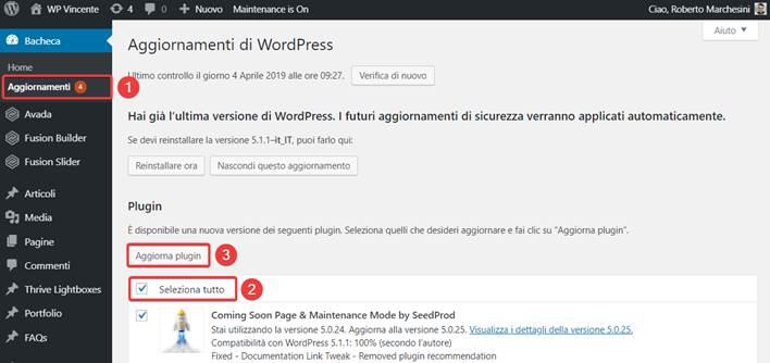 Come-aggiornare-WordPress-Step4