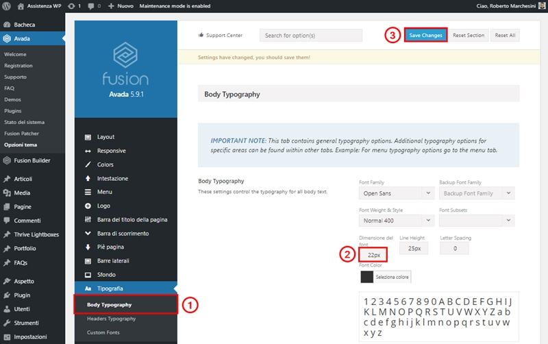 Come cambiare dimensione carattere WordPress-Step2